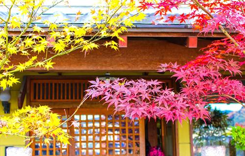 日本家屋‗新